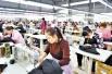 河南孟津县白鹤镇:建设扶贫基地 带动就业创业