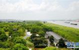 武台公园等4座公园被评为省级四星级公园