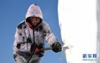 """国际雪雕比赛中的""""严寒斗士"""""""