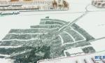 冬日白洋淀