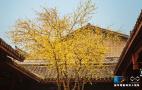 重庆百年民居