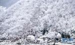 盘点大雪后恍若仙境的景点
