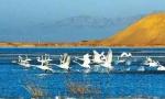 石羊河国家湿地公园