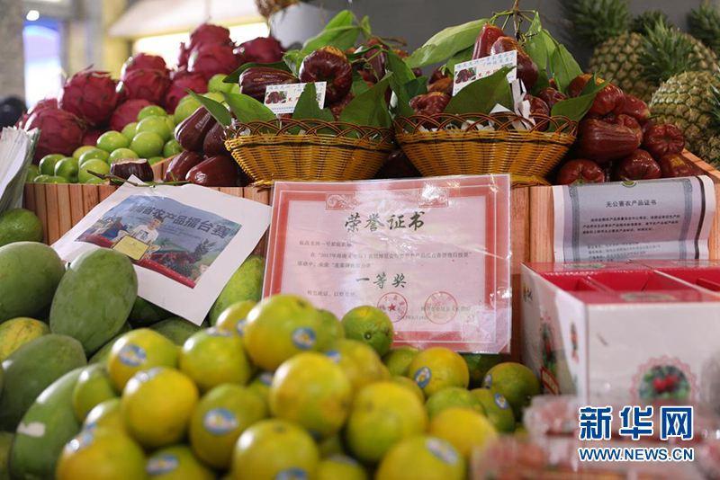 北京赛车开奖记录结果:潍坊诸城蔬菜大棚结出热带水果 商贩上门寻商机