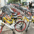 """""""公共自行车服务""""被纳入城市旅游相关行业"""