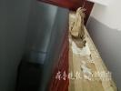 济南一市民装修遇糟心事:实木复合门锯开竟有夹心纸