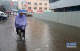 沈阳今年建成海绵城市示范区 八成降雨就地消纳
