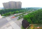 商丘:移步有景花常开 绿树浓荫翠满城