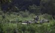 美国政府官员:国防部将发布声明 取消8月美韩军演