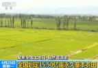 自然资源部:划定15.50亿亩为永久基本农田
