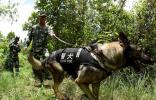 公安部部署打击中缅边境绑架拘禁中国公民专案行动