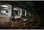 """印尼龙目岛地震:躲过海啸与""""运力不足""""的救援"""