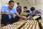 旺鸡蛋、活珠子:检验南京人的唯一标准