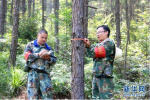 改革开放同龄人——朱海勇:从伐木工到护林员