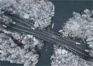 西湖雪景美如画