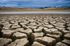 """巴黎气候大会如何拯救""""发烧""""的地球?"""