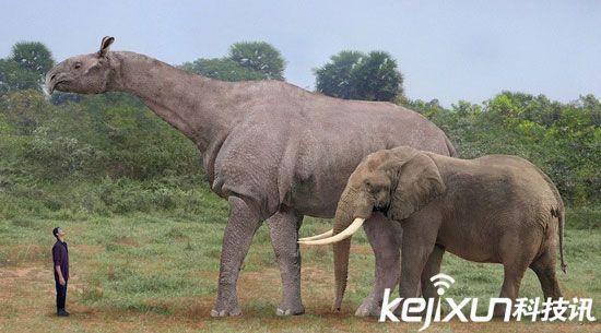 盘点动物史上十大灭绝巨型怪物和十大远古巨兽-中国