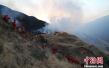 四川雅江县境内发生森林火灾 火势已控 无人伤亡