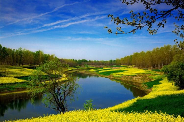 舞阳,因在舞水之北而得名。这里,南有舞水流清,藕池渔蓑,北有澧岸烟树,沙河夜泊,奇景佳趣,美不胜收。