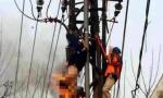徐州丰县发生高压触电事故,致一死一伤,起因让人深思