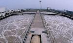 沈阳今年消灭建成区黑臭水体 取缔所有污水直排口
