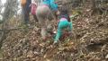4岁女童随父母游中国:徒步日行15公里 网友质疑