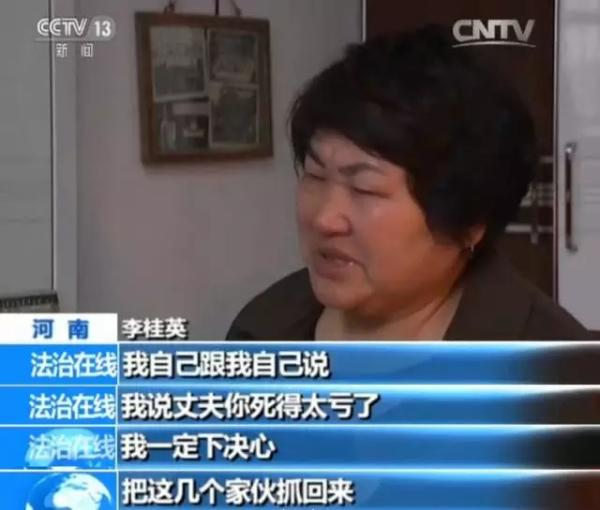 河南项城农妇追凶17年:嫌犯均落网 渎职者应被追责