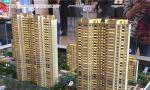 南京人买房热情高涨 有家庭以七旬老人名义购买