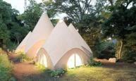 日本设计师专为女性设计养老森林屋