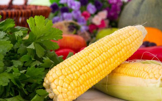 村民:几乎年年都有人种制种玉米图片