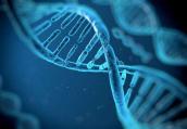 基因出错导致癌症缠身 DNA甲基化是真凶
