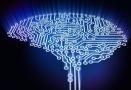 德国研究:聪明人和普通人大脑运转方式不同