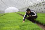 辽宁三年来累计培养出600名青年农场主