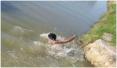 泸州2男孩游泳溺亡同伴施救未果 法院判死者父母应担责