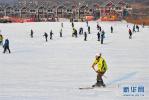 河北周末滑雪热