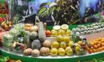 大连农畜产品质量位居全国前列 平均合格率达99.9%