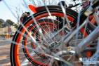 共享产品现身二手交易平台:僵尸共享单车说捡就捡?