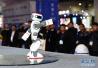 平昌冬奥会火炬传递综述:展现韩国科技文化 奥运圣火照亮未来