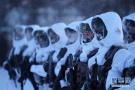 风雪中的北极哨兵