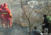 林州村民上山祭祖不慎引发山火 大火烧山十余亩