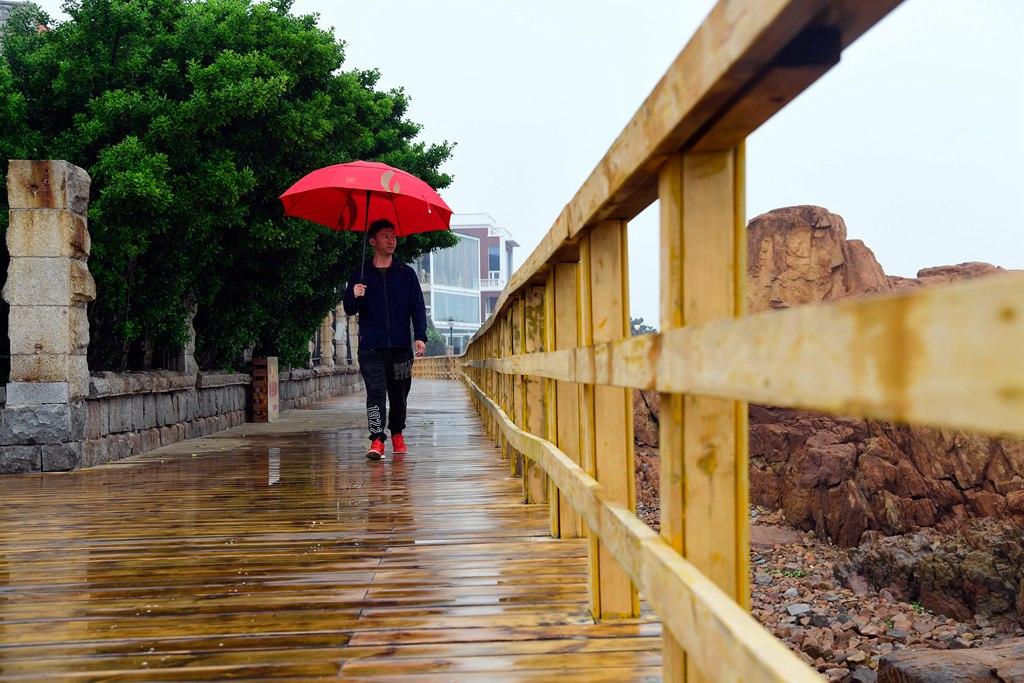 青岛:滨海步行道尽享山海风情