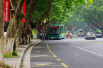 中国国际茶博会要开始啦!10条免费公交专线带你去喝茶
