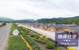 连云港猪瘟养殖场周边3公里划为疫区 扑杀上万生猪