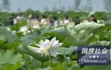 调查:超3成台湾受访者最期待当局提高薪资水平