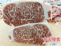 """河南郏县红牛:打破日本神话的中国""""雪花牛肉"""""""