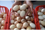 """鸡蛋价格连涨五周 """"火箭蛋""""卷土重来了?"""