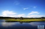 ?丰宁千松坝林场:20年增绿百万亩筑京津绿色屏障