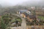 神山村,神气起来了——江西井冈山市神山村脱贫调查