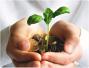 贵州试点政策性农产品目标价格保险