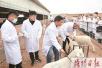 河南汝阳:学习新技术 助农民致富